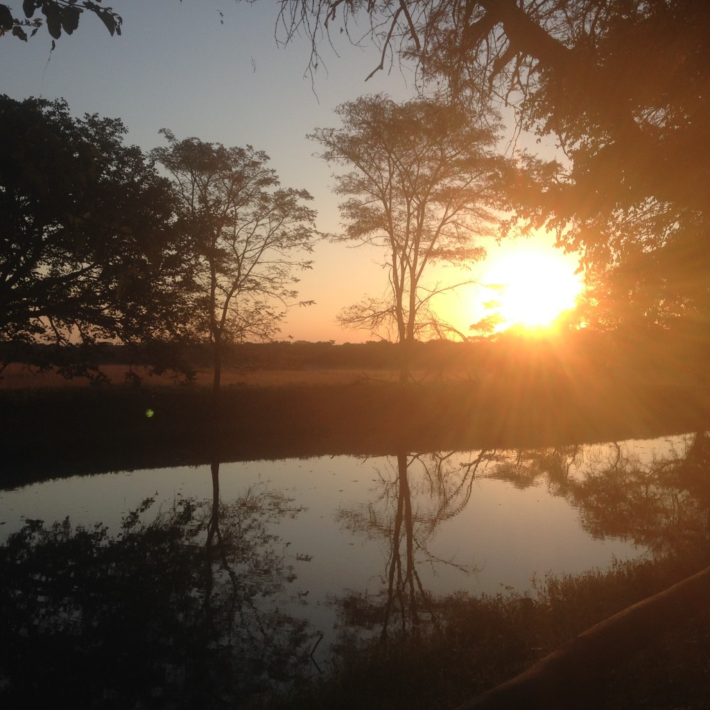 Sunset in Zambia